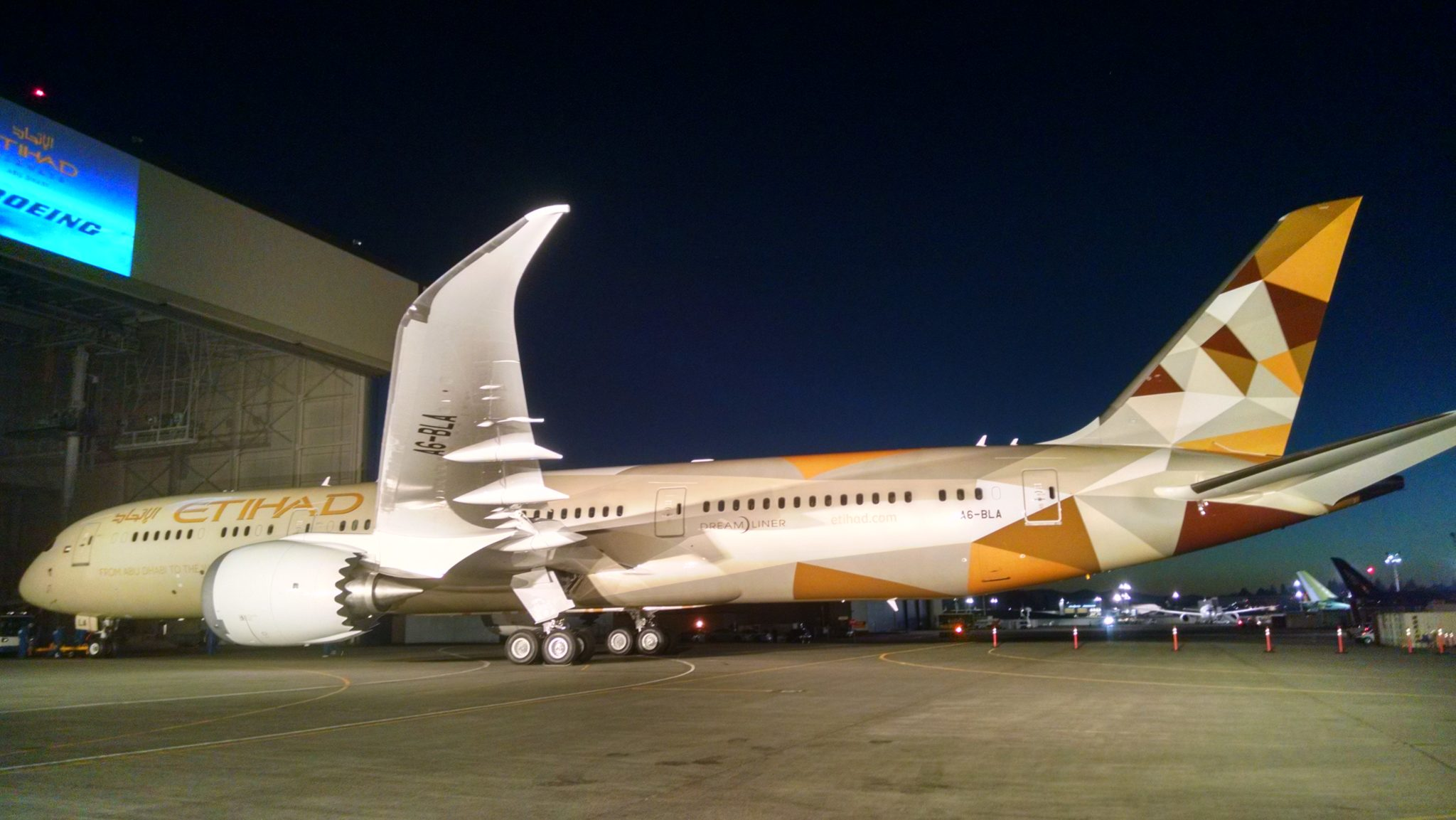 Etihad goes way outside Boeing's catalog for its first 787 ...